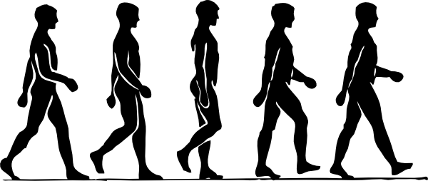 jpg library People silhouette at getdrawings. Man walking clipart