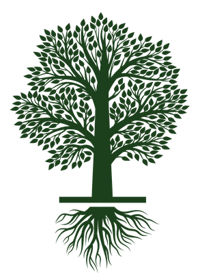 clip download Growth clipart. Tree growing life cycle