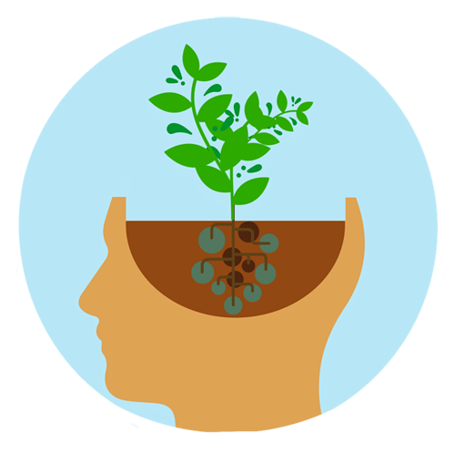 svg royalty free stock How to develop a. Growth clipart plant