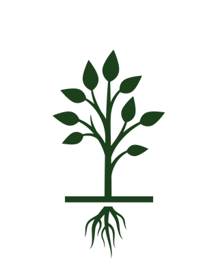 jpg freeuse Growth clipart plant. Tree growing life cycle
