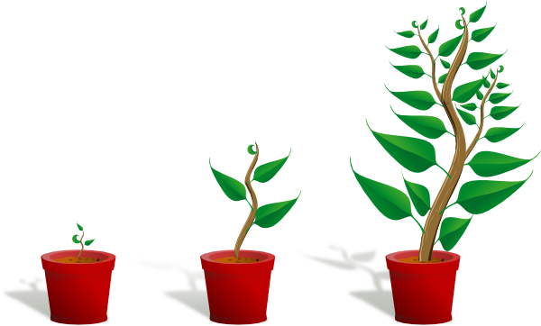 transparent Plant Growth clip art