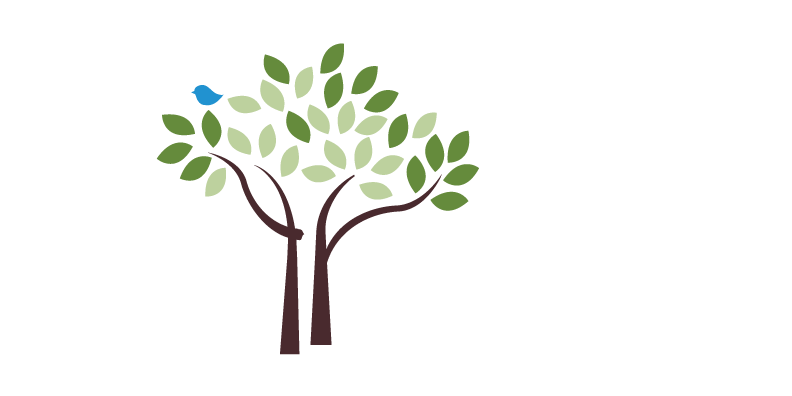 jpg library download Treescharlotte canopy conservation charlotte. Growth clipart tree plantation
