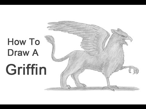 clip art freeuse library How to draw a. Gryphon drawing