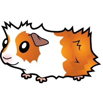 picture freeuse stock Pin on moar animals. Guinea clipart cute