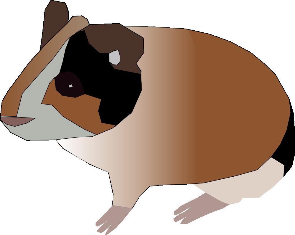png free download Guinea clipart cute. Pig at getdrawings com