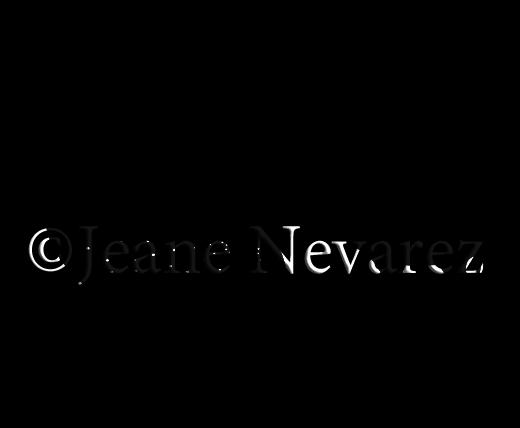 banner freeuse Guinea clipart guinea fowl. Art by jeane nevarez