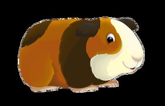 clipart free Top clip art free. Guinea clipart guinea pig