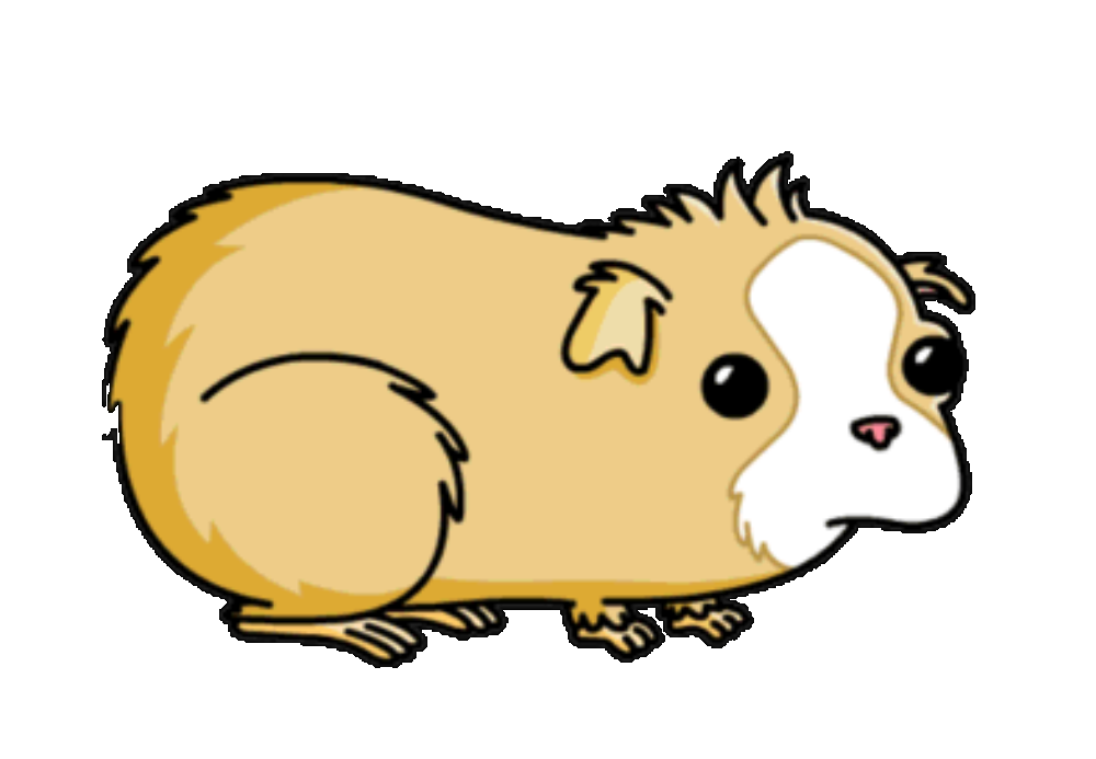 vector library download Guinea clipart guinea pig. Pokey simpsons wiki fandom