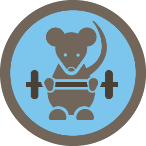 graphic stock Gym clipart gym time. Certified rat neil turner