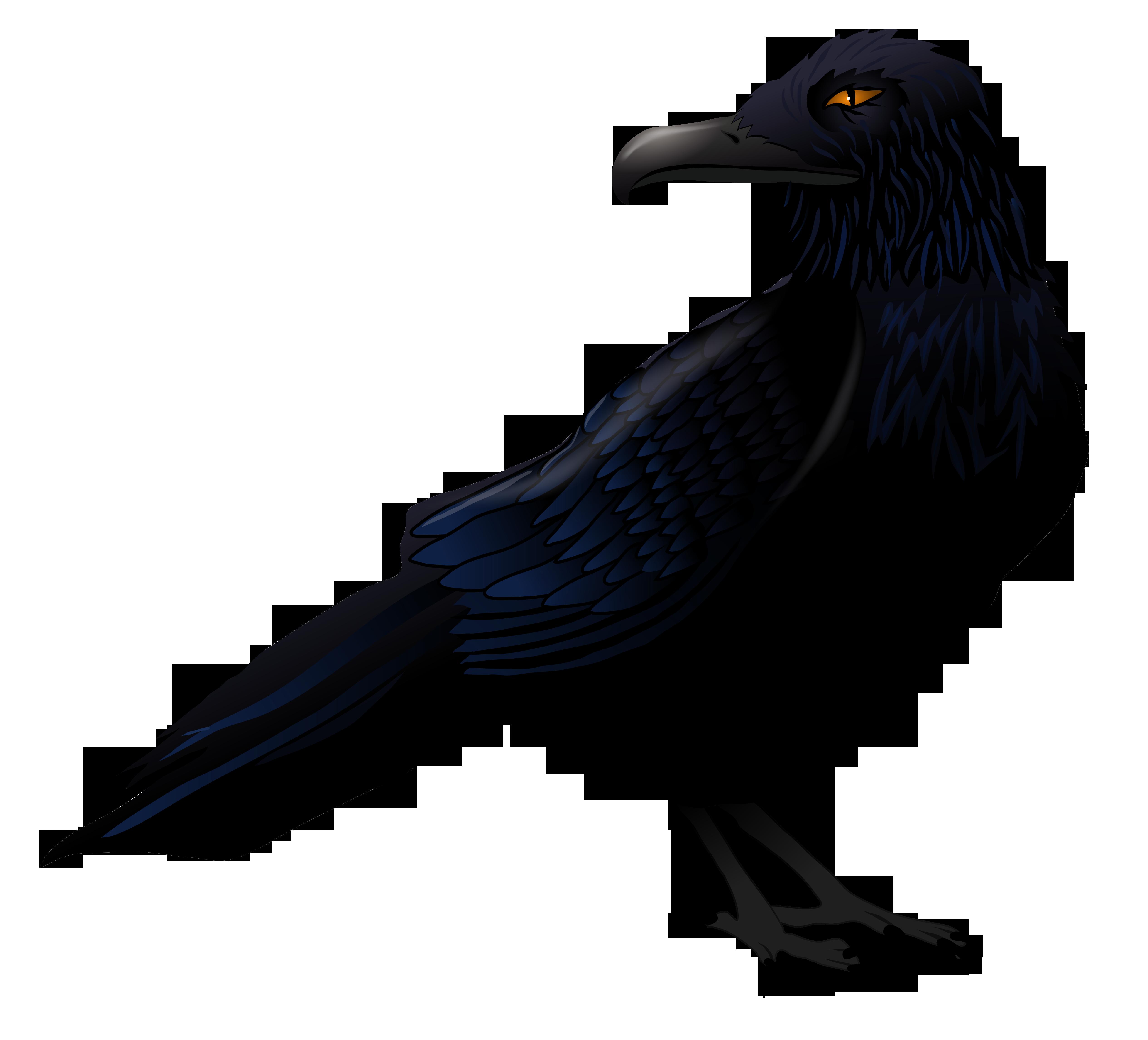 jpg free download Vector raven. Haunted png clipart art
