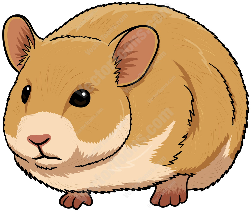 clipart royalty free stock Free cliparts download clip. Hamster clipart.