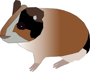 vector transparent library Clip art at clker. Hamster clipart