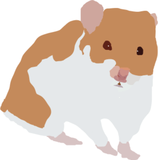 image transparent stock Hamster clipart agouti. I can try to