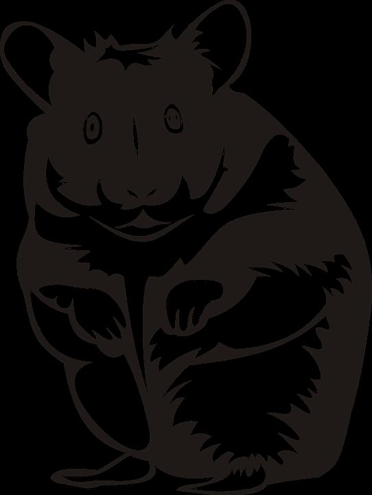 vector transparent download Hamster clipart rodent