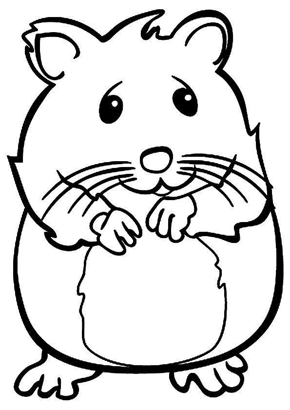 royalty free  best coloring pages. Hamster clipart color