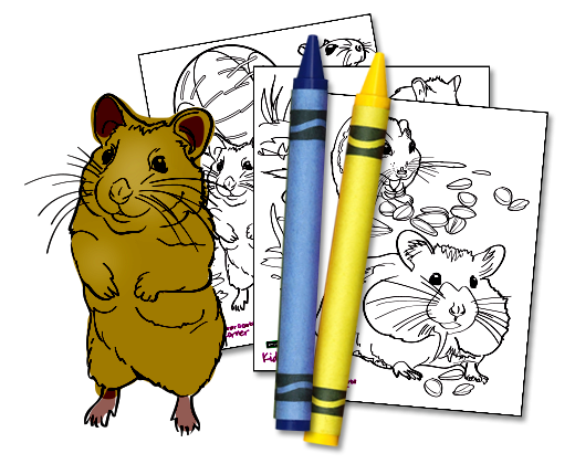 banner black and white library Hamster clipart color. Gerbil small world download