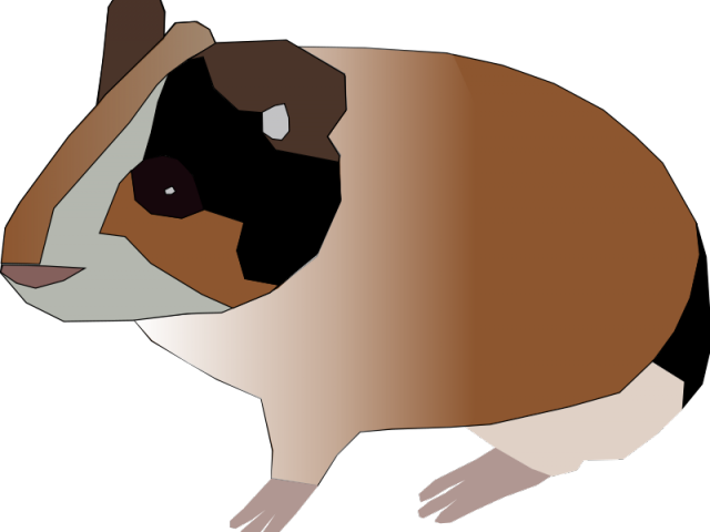 picture freeuse library Guinea pig free on. Hamster clipart color