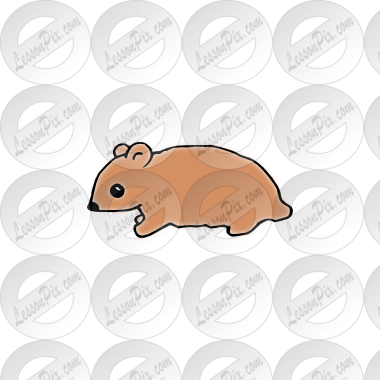 png freeuse library hamster clipart gerbil #79469994