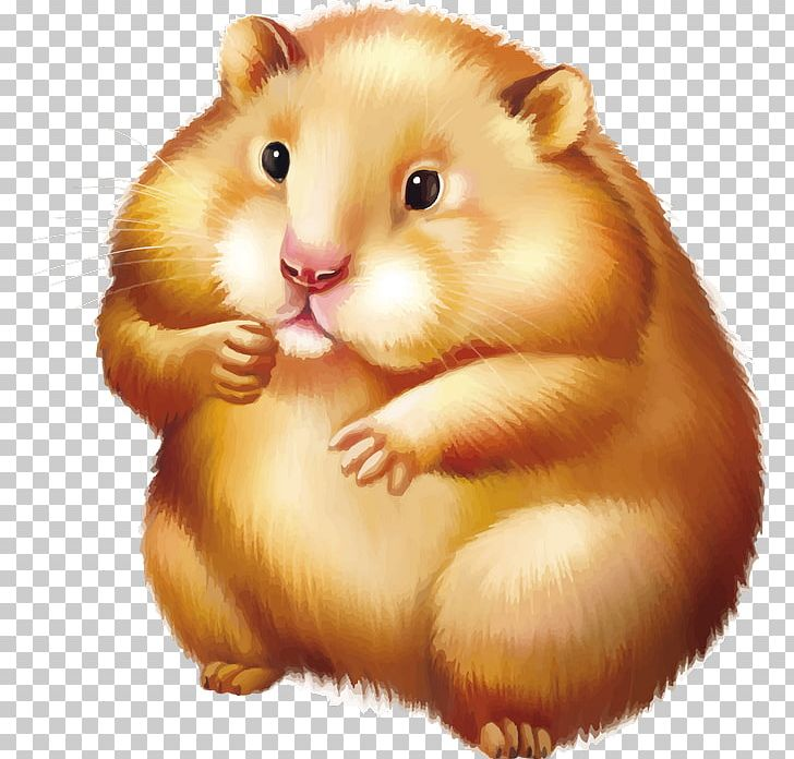 graphic freeuse stock Golden mouse png animals. Hamster clipart rodent