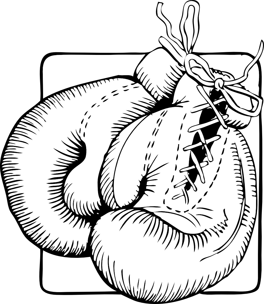 graphic transparent download Hanging boxing gloves clipart. Black white line art