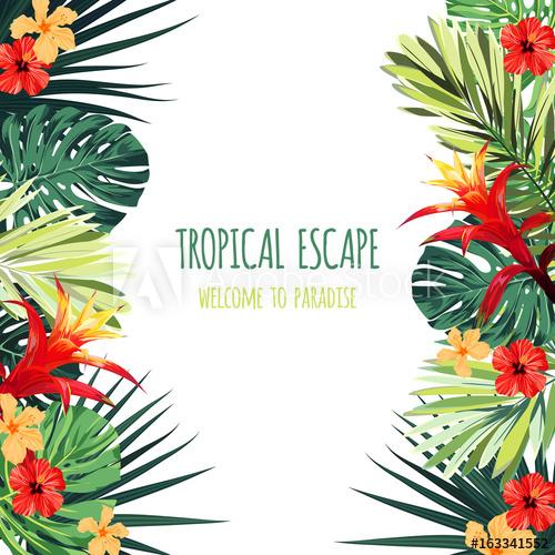 banner library Floral square postcard design. Hawaiian vector.