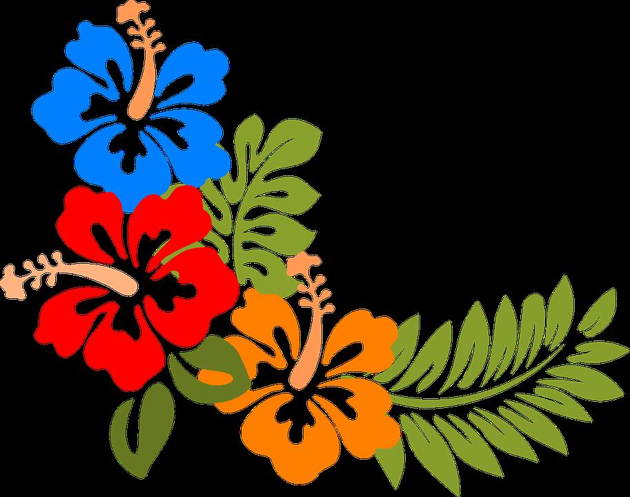 picture free download Hawaiian vector. Imagen gratis en pixabay.
