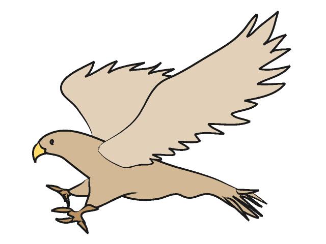 jpg library download Free download clip art. Hawk clipart.