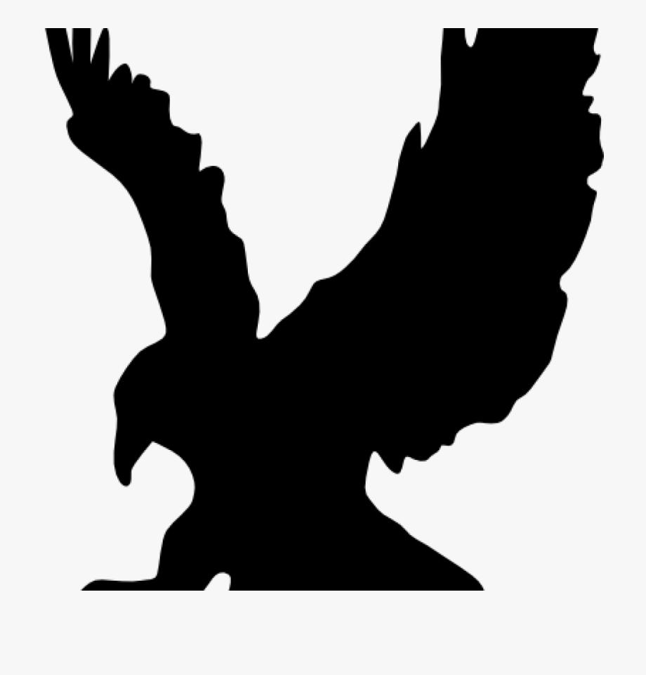 svg royalty free download Hawk clipart. Free panda .