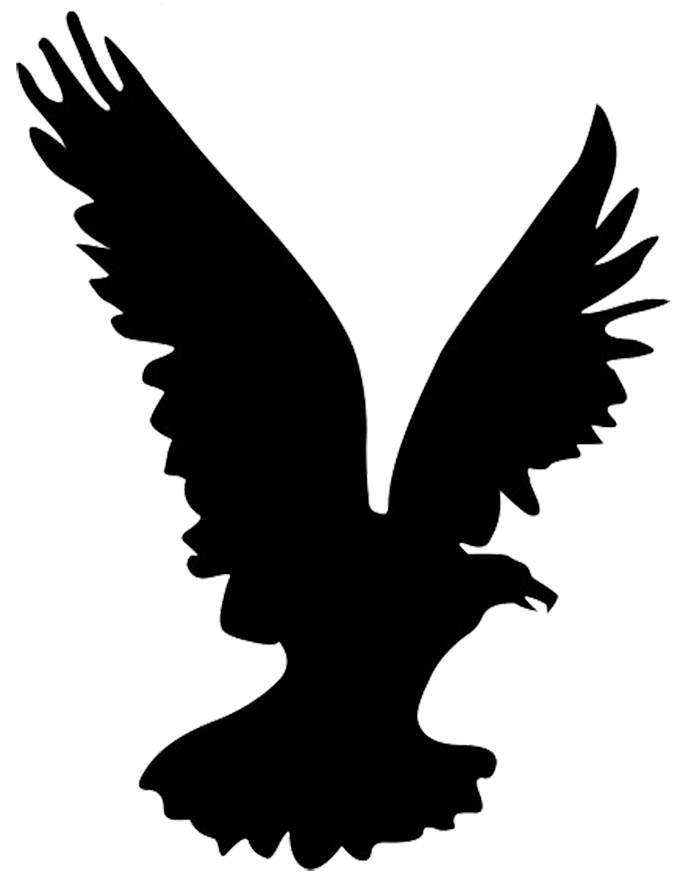 svg transparent stock Vector concepts hawk. Head silhouette at getdrawings