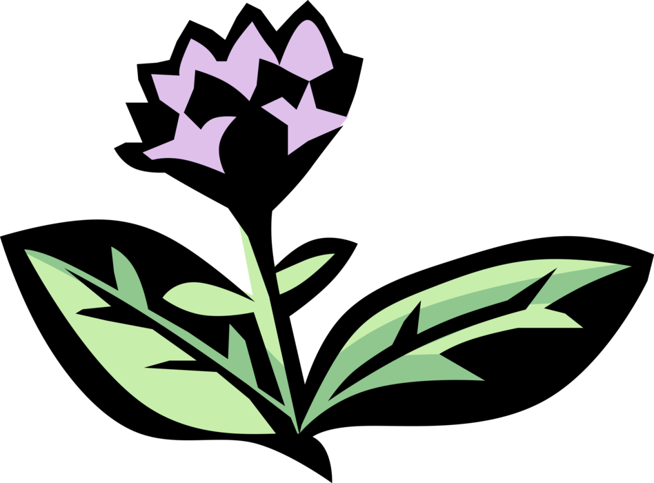 clipart transparent Oregano Aromatic Herb Spice