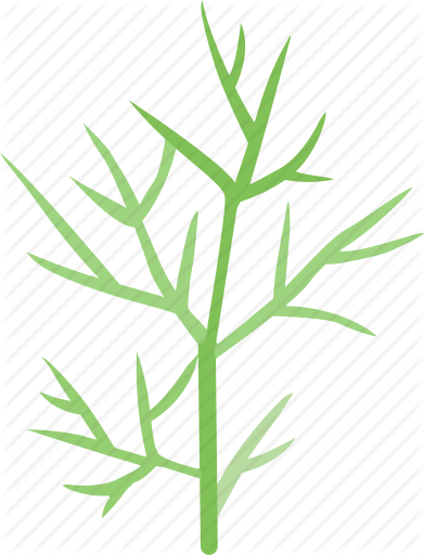 library herb vector spicy #113541931