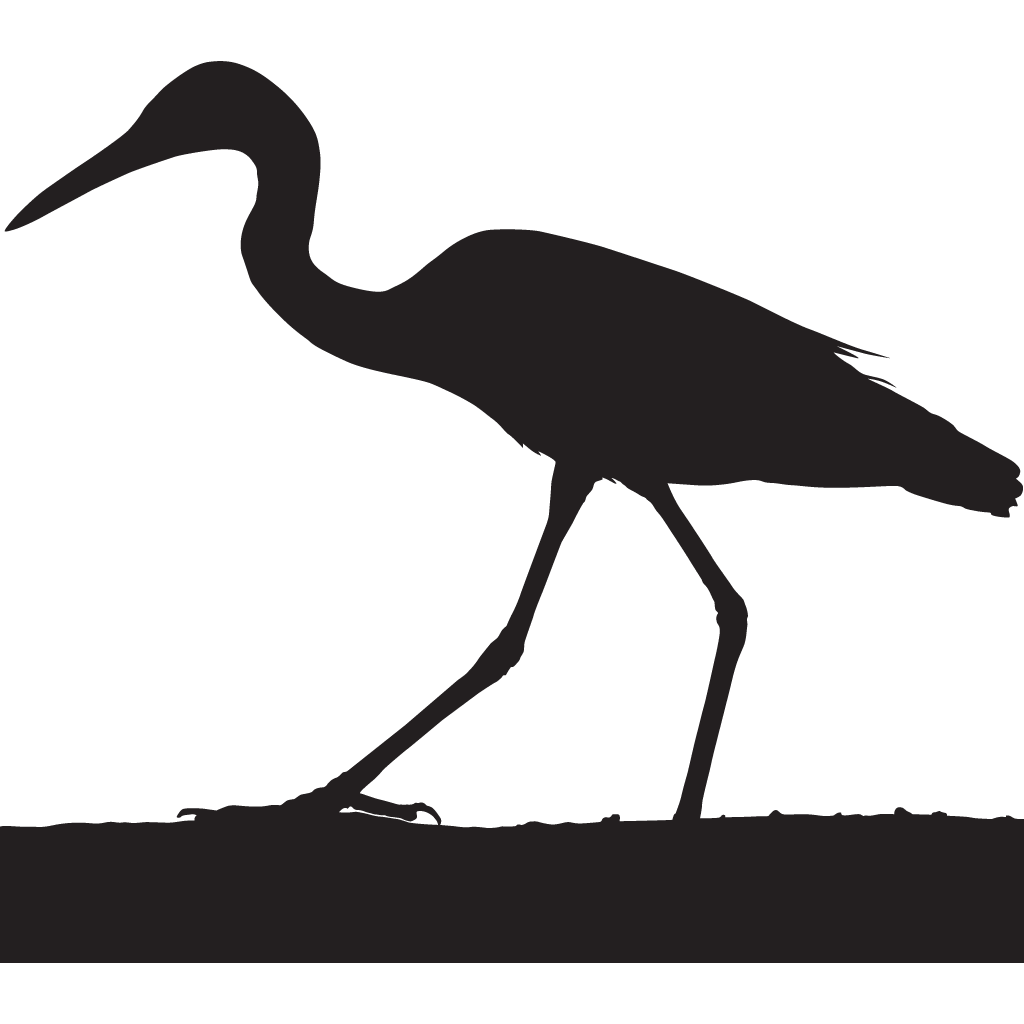 png Collection of free Birds drawing heron