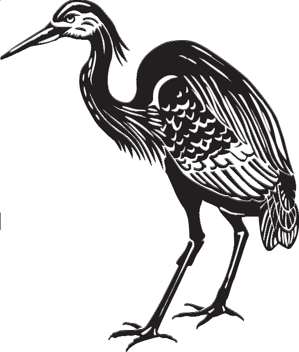 image freeuse stock Collection of free Birds drawing heron