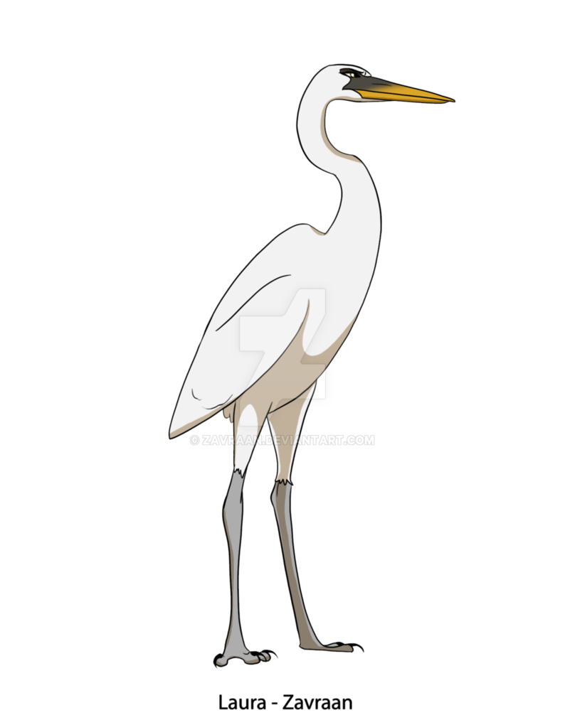 transparent stock White Heron by zavraan on DeviantArt