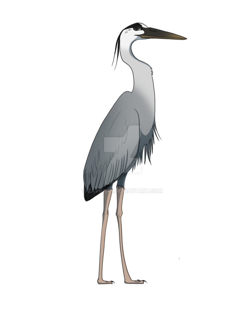 vector download Collection of free Birds drawing heron