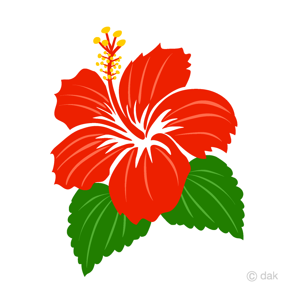 png library Simple red free picture. Hibiscus clipart