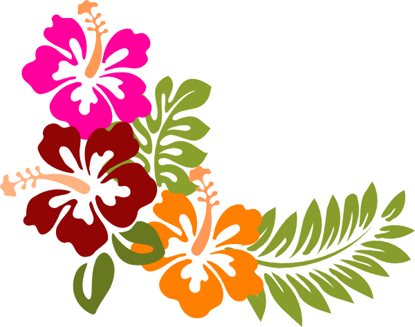 banner transparent stock Image result for moana. Hibiscus clipart.