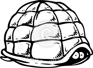 banner freeuse Turtle shell at getdrawings. Hiding drawing