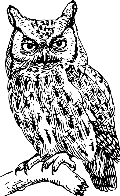 clip art free library Tribal Owl Drawing at GetDrawings
