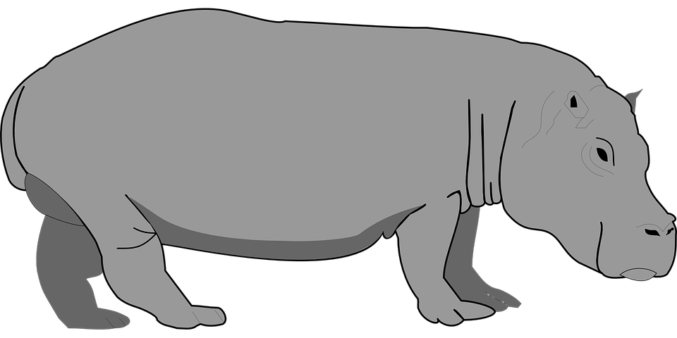 clipart library download Hippopotamus clipart. Hippo gambar free on
