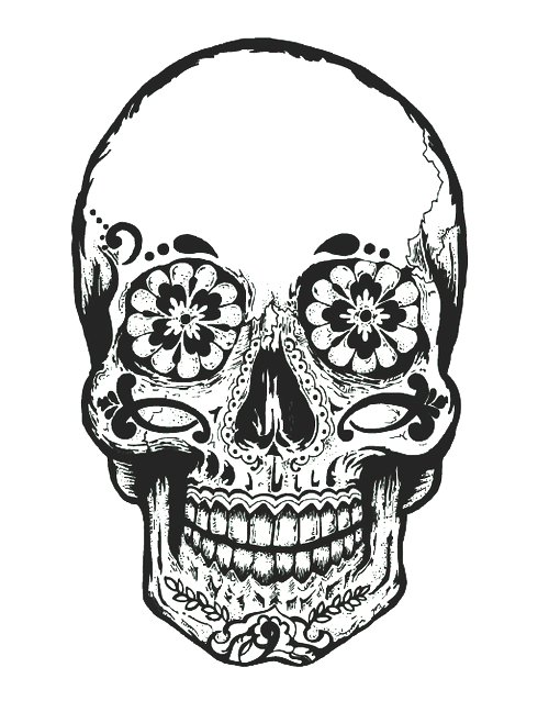 clip library stock  ideas hipster for. Chicks drawing skull