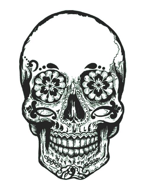 jpg free stock  ideas drawing for. Hipster vector skull