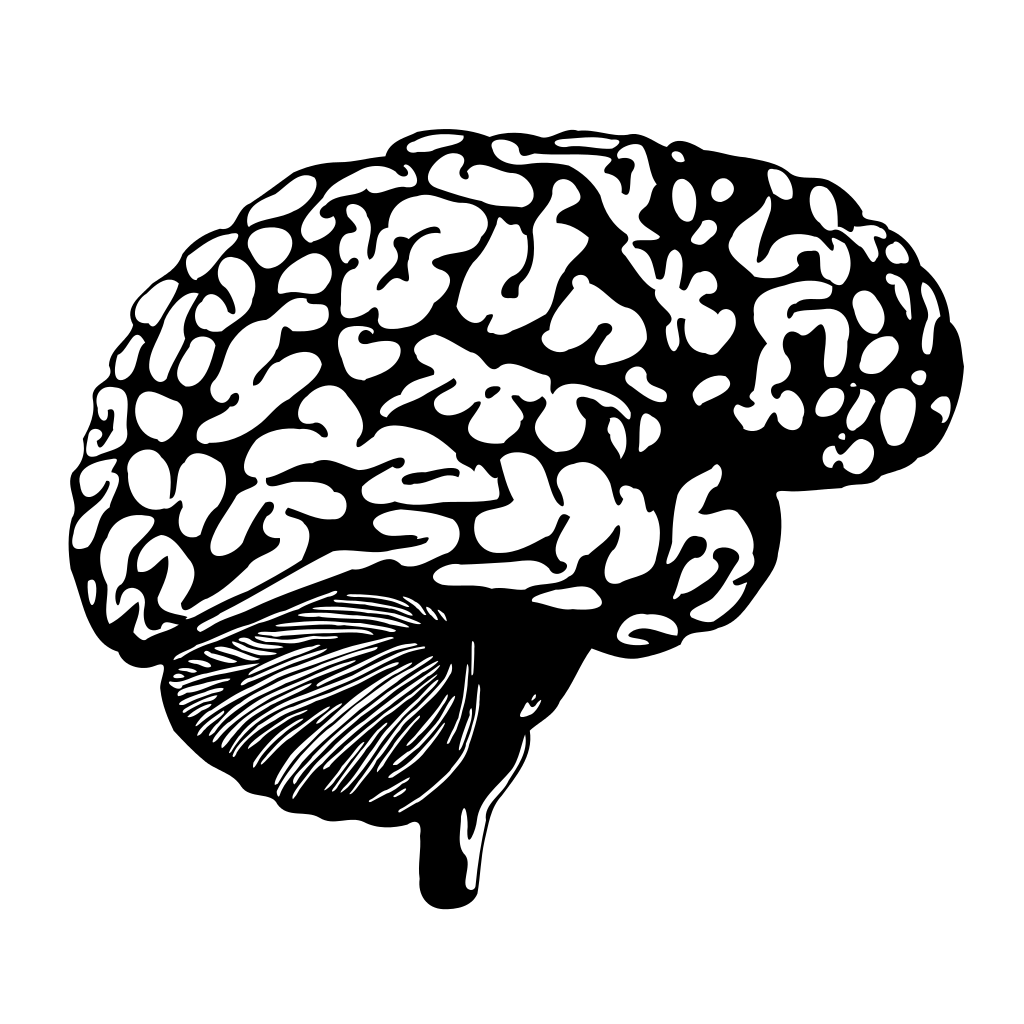 svg free library Searching the brain for the source of irrational exuberance