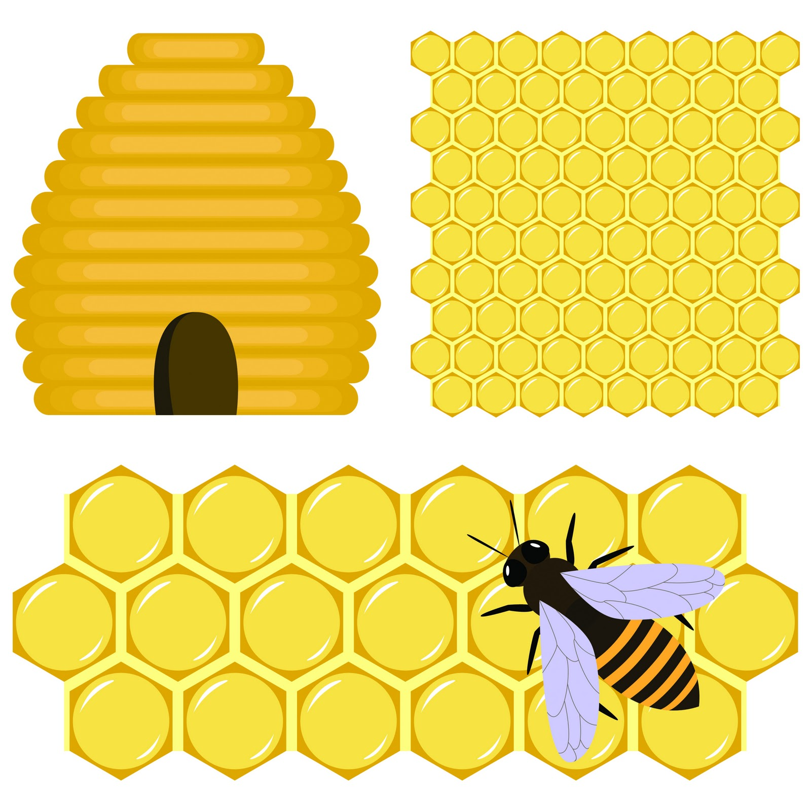 free stock Images gallery for free. Hive clipart border