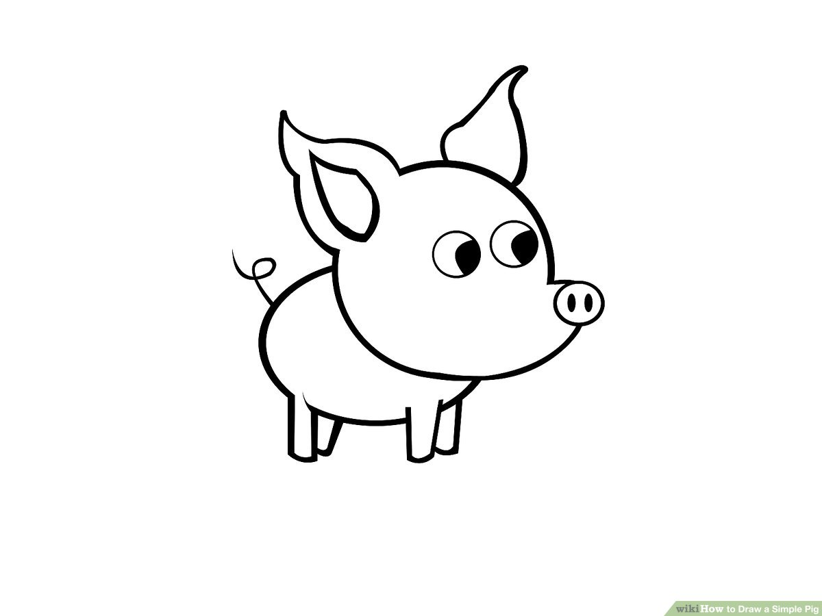 jpg free How to Draw a Simple Pig