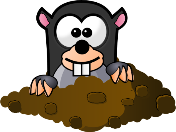 picture stock Mole coming out of. Hole clipart.