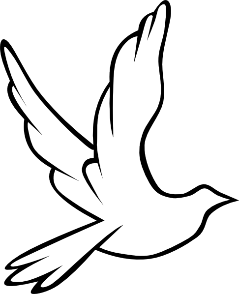 png library download Holy spirit dove panda. Maundy clipart spiritual wellness.
