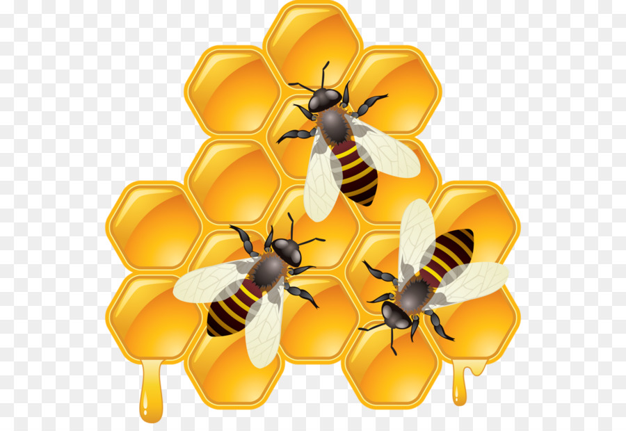 graphic download Bee background beehive . Honeycomb clipart.