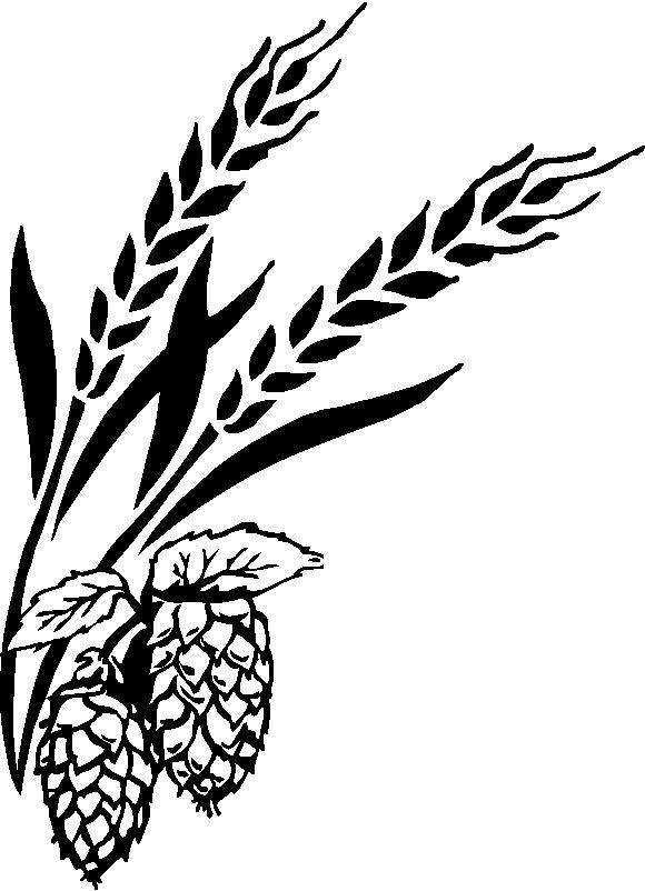 clip freeuse download Pics for beer barley. Hops clipart