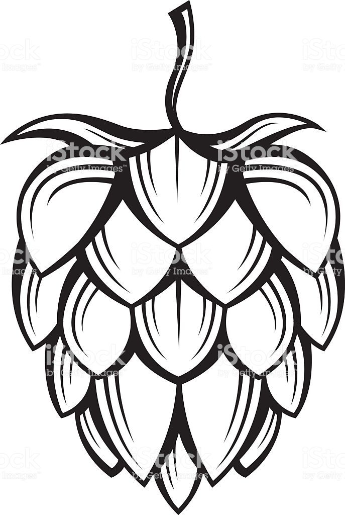 jpg black and white Hops clipart. Free and barley real